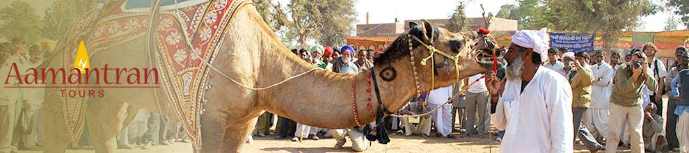 Rajasthan Round Trips from Delhi, Rajasthan Tour Packages from Delhi to Delhi